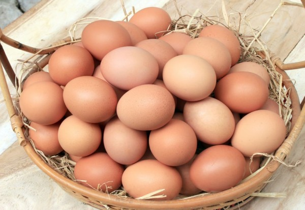 44516430 - eggs/basket with eggs in straw